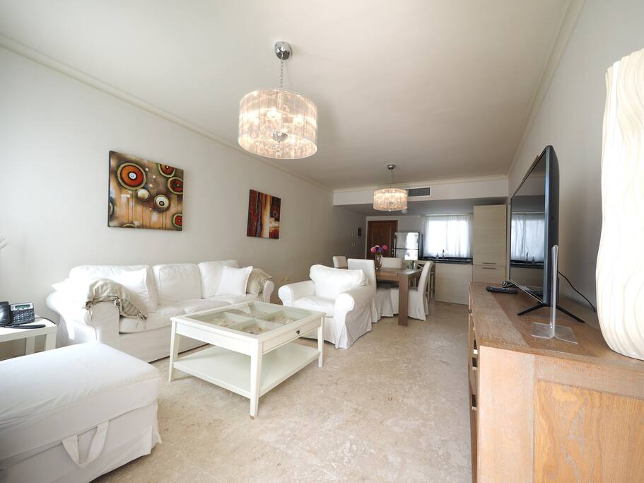 Living room, apartment A204