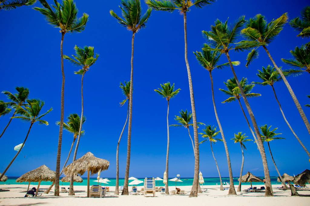 Palms, White Sands, Turquoise Water – Right on Los Corales Beach, DR - Everything Punta Cana