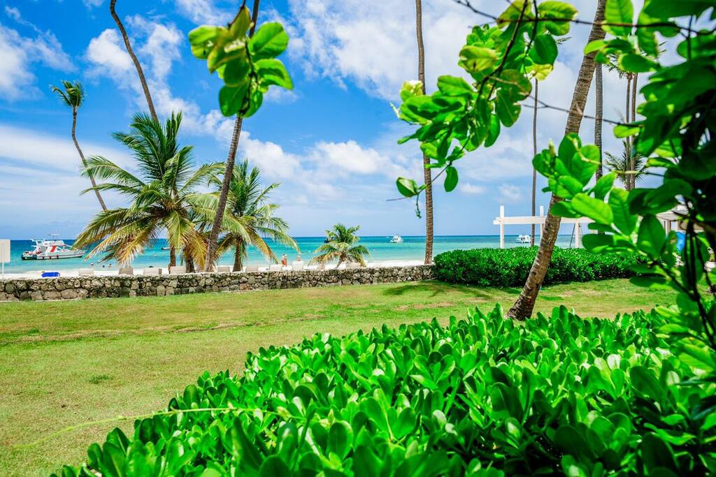 Just look at this ever-green garden and a heavenly beautiful beach!