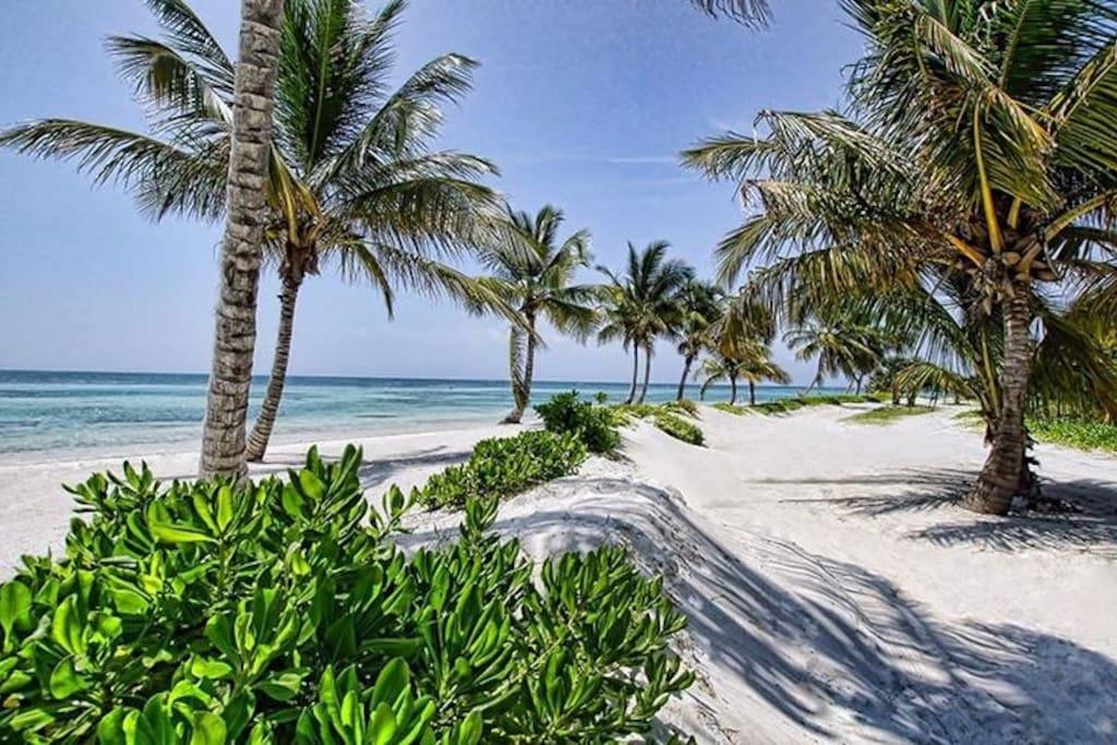 Villa Casa & Co at Puntacana Resort & Club – near beach, with pool & maid - Everything Punta Cana