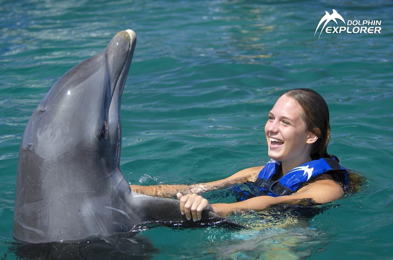 Birds and Sea Lions Show - Everything Punta Cana