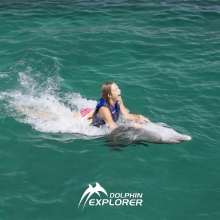 Fantastic Swimming with Dolphins