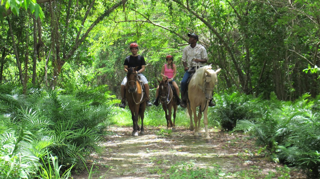 Countryside Horseback Riding - Everything Punta Cana
