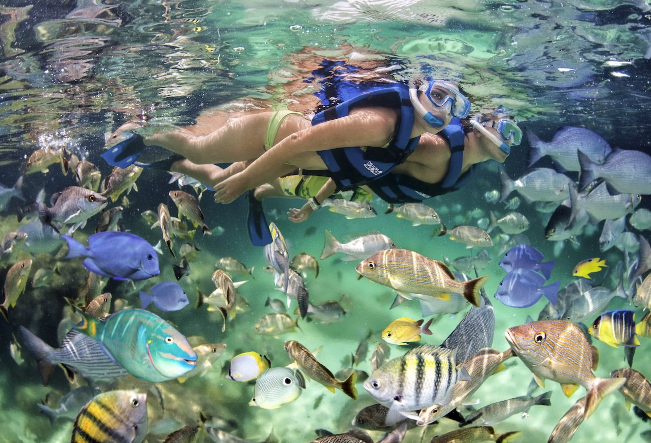 Punta Cana Snorkeling From Beach The Best Beaches In World