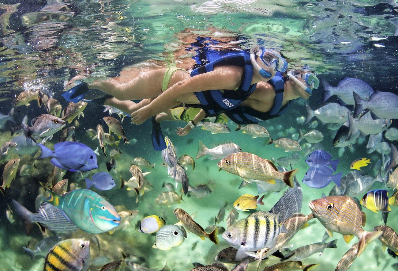 POWER CRUISE – Party Boat Punta Cana - Everything Punta Cana