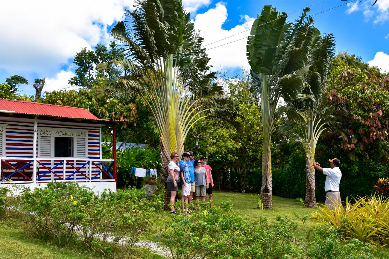 Amazing VIP Excursion in Punta Cana. <i>Outback Explorer</i> - Everything Punta Cana