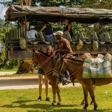 La Hacienda Park. Punta Cana! - Everything Punta Cana