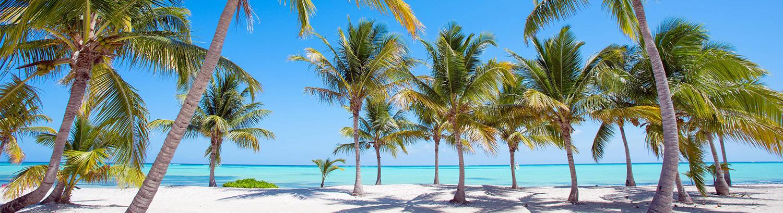 ¡Aventura Inolvidable! ¡Es una aventura inolvidable para todos los que quieren explorar los lugares más bonitos de Punta Cana! ¡Resérvala ahora!