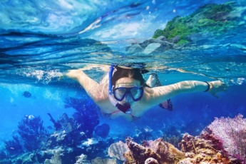 Catalina Island Day Trip: <br />the Best Snorkeling Experience
