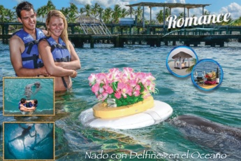 Romance with Dolphins for Couples <i>in Punta Cana</i>