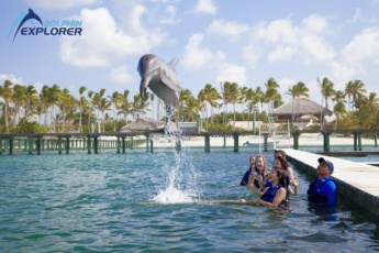 Swim with Dolphins in Punta Cana, Bavaro! <i>Underwater Adventure</i>