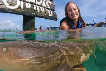 Swim with Sharks and Rays in Punta Cana