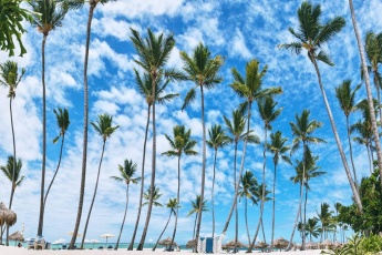 Palms, White Sands, Turquoise Water – Right on Los Corales Beach, DR