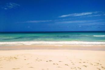 Beautiful Cozy 2BR Beach Condo