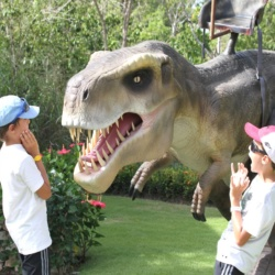 Dino World Activities
