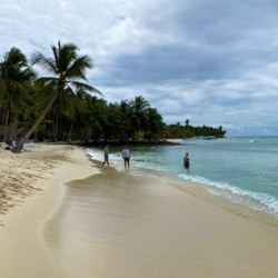 Seaweed in Punta Cana – What Time of the Year is There a Lot of Algae?